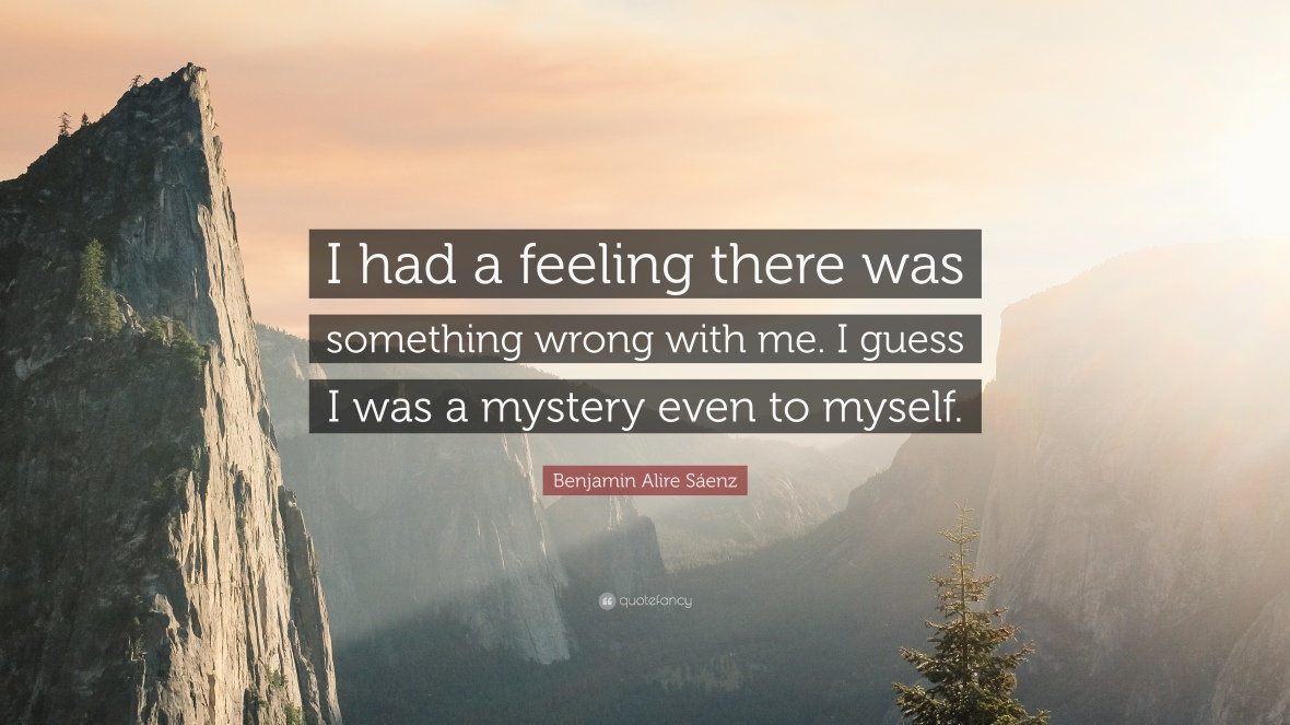 373994-Benjamin-Alire-S-enz-Quote-I-had-a-feeling-there-was-something